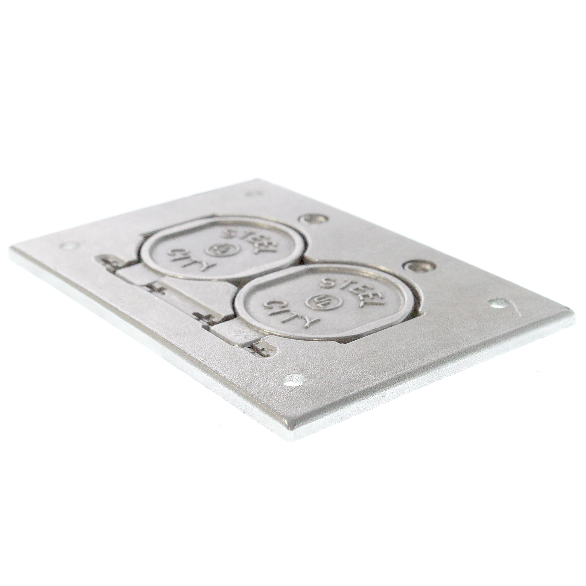 Thomas Amp Betts P64 Ds Al Aluminum Cover Plate With 2